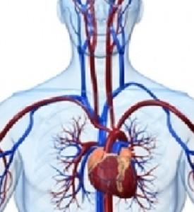 iperlipoproteinemia