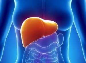 ipertrigliceridemia steatosi epatica