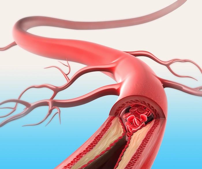 tabagismo apparato cardiovascolare