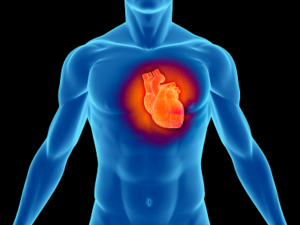 malattie cardiovascolari biomarcatori